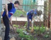 В России молодежь помогает ветеранам в весенней уборке