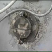 Мобильный крематорий «зачистит» от чумы петербуржские фермы