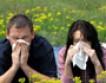 Чистоплюйство ведет к аллергии