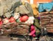 В Китае с мусором бороться — значит, экономить