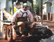Уборка улиц после трагедии в Венгрии