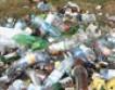 В Воронеже устроили «мусорную фотосессию»