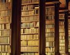 Избавляемся от библиотечной пыли