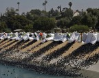 Американцы используют пластиковые шары чтобы спастись от засухи