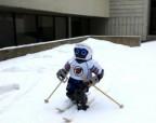 Ученые поставили робота на лыжи