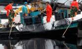 Уборка нефти