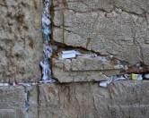 Раз в полгода в Иерусалиме чистят Стену плача