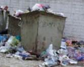 В Севастополе не хватает сил для уборки мусора