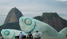 Светящиеся рыбы в Рио