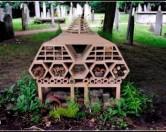 В Крыму появится гостиница для насекомых, в которой будут соседствовать муравьи, моль, жуки и мухи.