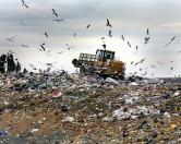 Бизнес из мусора: как безработный стал предпринимателем