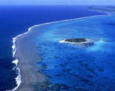 В океане обнаружена новая среда обитания