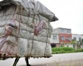 В Китае живет настоящий человек-улитка