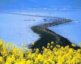 «Чудо Моисея» в уезде Чиндо