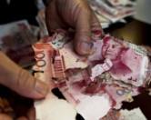 Китаянка потеряла 65 тысяч долларов из-за термитов