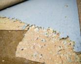 4-летняя девочка из-за болезни начала питаться ковролином и обивкой для мебели.