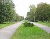 Парки Тернополя ждет реконструкция и генеральная уборка
