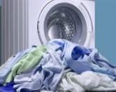 У Великобританії винахідники створили унікальну пральну машину, керувати якою здатен пес