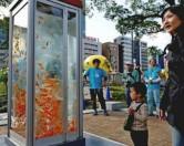 В Японии появились телефонные будки с золотыми рыбками