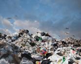 Интересные факты о переработке отходов