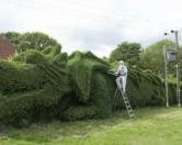 В Англии садовник вырезал из кустарника 30-метрового дракона