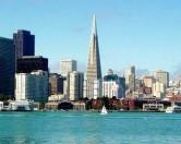 Одиноким людям из Сан-Франциско предлагают тараканов и скорпионов.