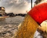 Американские ученые определяют степень ожирения по сточным водам