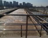 В очистных сооружениях Китая найдены «супербактерии», резистентные к антибиотикам