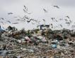 Экологи: На каждого украинца приходится 750 тонн мусора