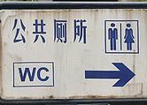 Китай: чиновники подсчитывают количество мух в туалетах