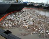Морской мусор убивает обитателей водных просторов