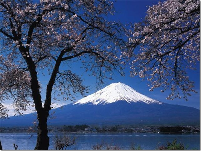 7. Япония